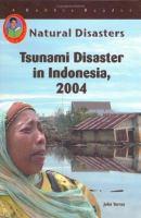 Tsunami Disaster in Indonesia, 2004
