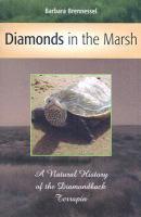 Diamonds in the Marsh