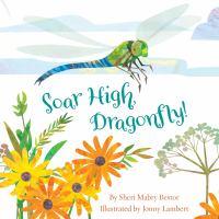 Soar High, Dragonfly!