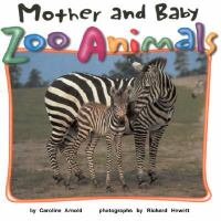 Mother and Baby Zoo Animals