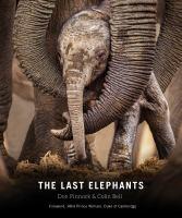 The Last Elephants