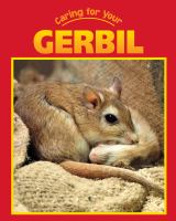 Caring for your Gerbil
