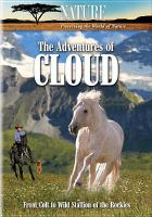 The Adventures of Cloud
