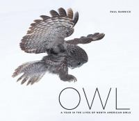 A Year in the Lives of North American Owls