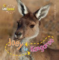 Joey to Kangaroo
