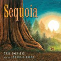 Image: Sequoia