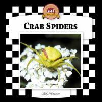 Crab Spiders