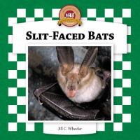 Slit-faced Bats