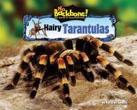 Hairy Tarantulas