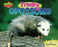 Tricky Opossums