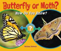 Butterfly or Moth?