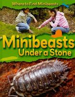Minibeasts Under A Stone