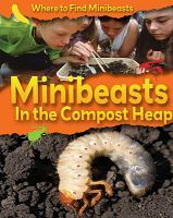 Minibeasts in the Compost Heap