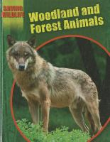 Woodland and Forest Animals