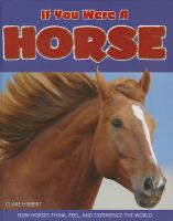 If You Were A Horse