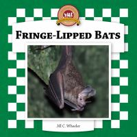 Fringe-lipped Bats