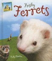 Frisky Ferrets