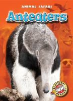 Anteaters