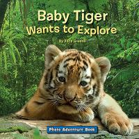 Baby Tiger Wants to Explore