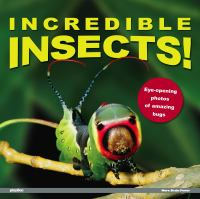 Incredible Insects!