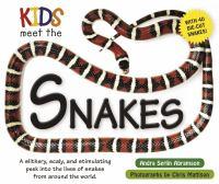 Kids Meet the Snakes