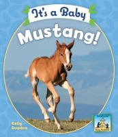It's A Baby Mustang!