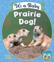 It's A Baby Prairie Dog!