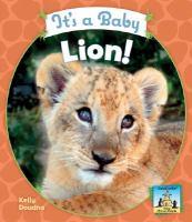 It's A Baby Lion!