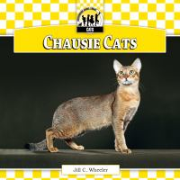Chausie Cats