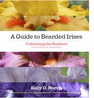 A Guide to Bearded Irises