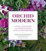 Orchid Modern