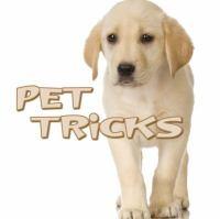 Pet Tricks