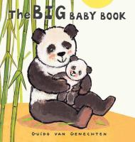 The Big Baby Book