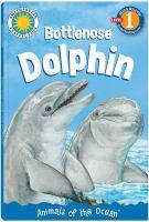 Hello, Dolphin!