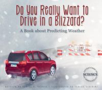 Do You Really Want to Drive in A Blizzard?