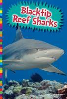 Blacktip Reef Sharks