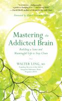 Mastering the addicted brain : building a sane and meaningful life to stay clean