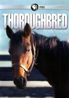 Thoroughbred