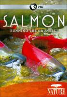 Salmon Running the Gauntlet