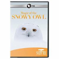 Magic of the Snowy Owl