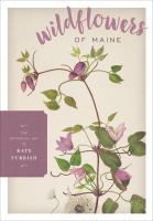Wildflowers of Maine