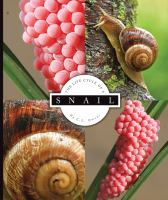 The Life Cycle of A Snail