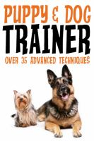 Puppy & Dog Training