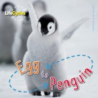 Egg to Penguin