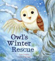 Owl's Winter Rescue