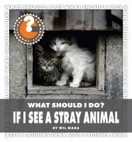 What Should I Do? If I See A Stray Animal