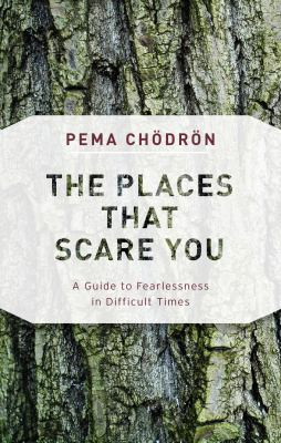 The Places That Scare You: A Guide to Fearlessness in Difficult Times(book-cover)