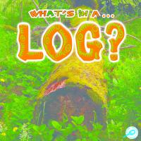 What's in A Log?
