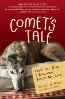 Image: Comet's Tale