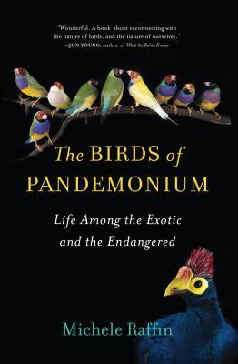 The Birds of Pandemonium, by Michelle Raffin